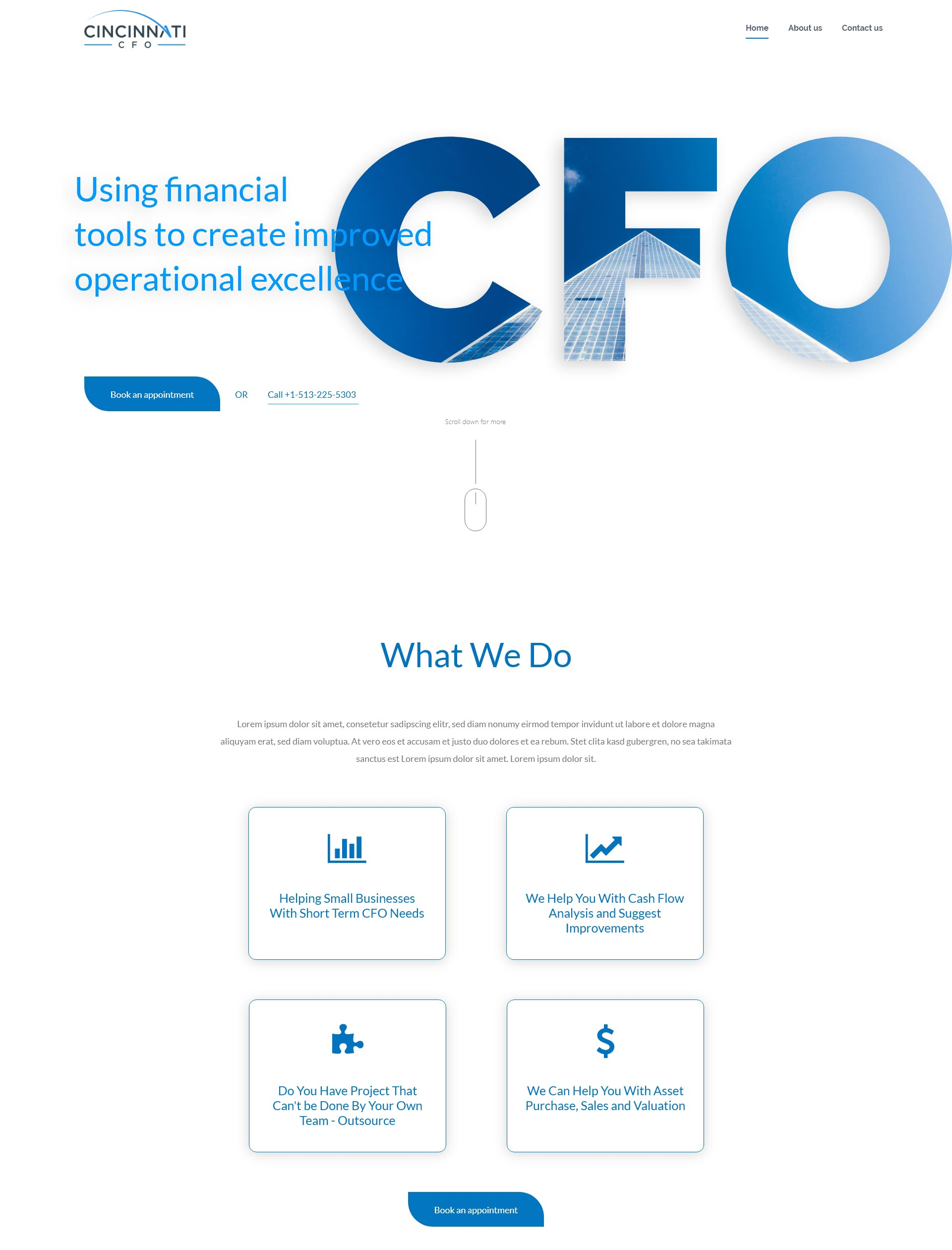 Homepage for a CFO Service Business